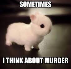 MurderBunny
